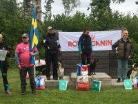 Skärgårdscupen 2017